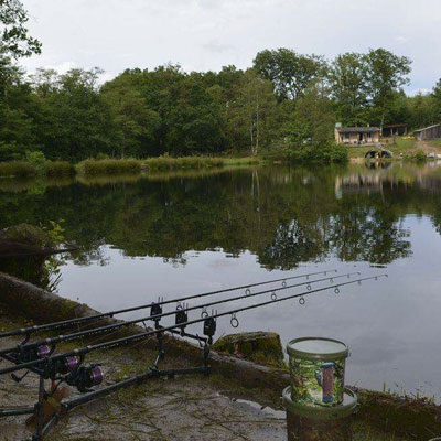 Carp Fishing at Kingfisher Lakes